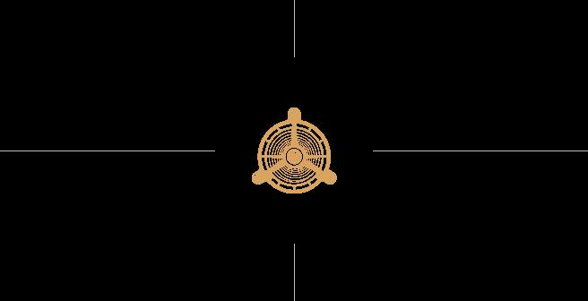 中央徽标标志